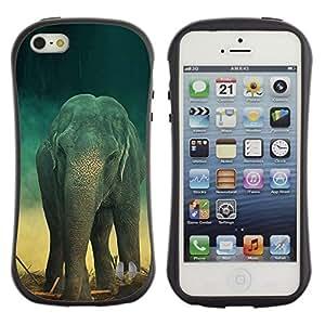 All-Round híbrido de goma duro caso cubierta protectora Accesorio Generación-I BY RAYDREAMMM - Apple iPhone 5 / 5S - Elephant Teal Trunk Vintage Cute Retro