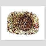 Best Cloud Nine Prints Toddler Girl Books - Hedgehog Art, Beatrix Potter Woodland Print Review