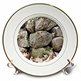 3dRose TDSwhite – Rock Photos - Rural Stonewall Rocks Dry Leaves - 8 inch Porcelain Plate (cp_281932_1)