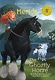 Merida #3: The Ghostly Horse (Disney Princess) (A Stepping Stone Book(TM))