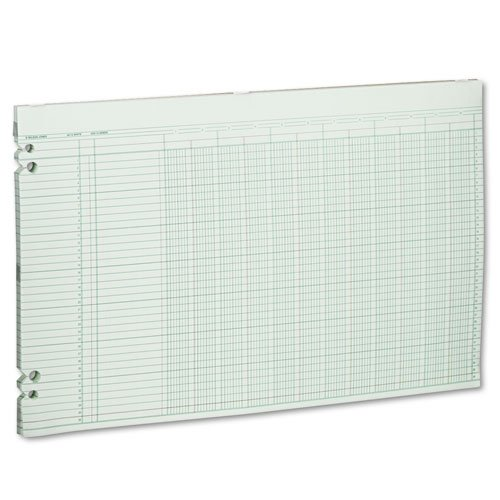 Wilson Jones - Accounting Sheets, 12 Columns, 11 x 17, 100 Loose Sheets/Pack, Green G50-12 (DMi PK ()
