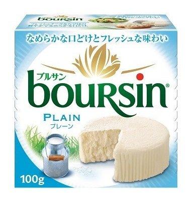 ブルサン プレーン 100g ×1ケース チーズ (1ケース)