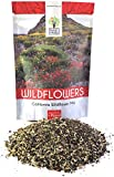 Search : California Wildflower Mixture - Bulk 1/4 Pound Bag - Over 30,000 Native Seeds - Open Pollinated and Non GMO
