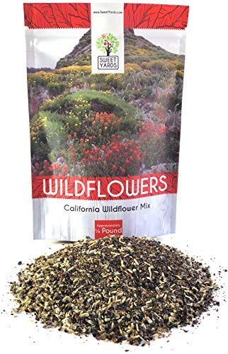California Wildflower Mixture - Bulk 1/4 Pound Bag - Over 30,000 Native Seeds - Open Pollinated and Non ()