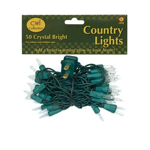 CWI Gifts 50 Count Light Set, Green wire,Clear Bulbs