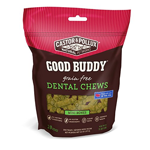 Good Buddy Dental Mini Bones, 10 Oz