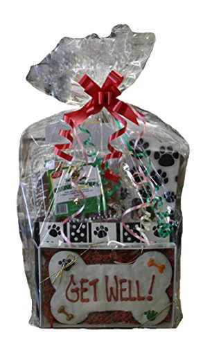 Tail Bangers PFD201232 Get Well GIft basket