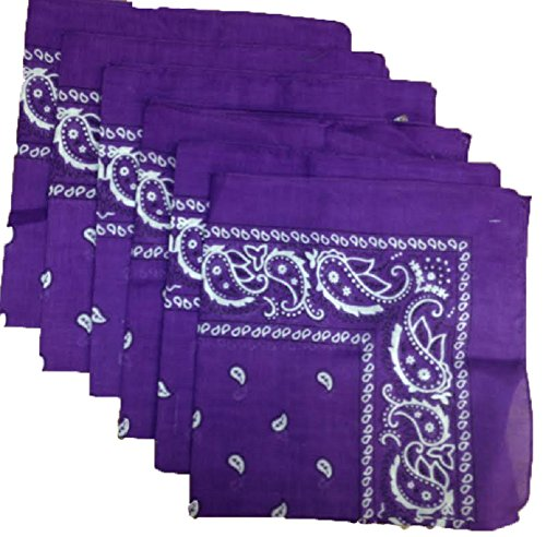 6 Color Pack Paisley Bandana Scarf, Head Wraps PURPLE