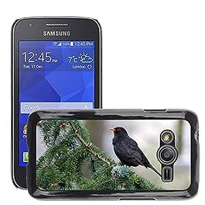 GoGoMobile Slim Protector Hard Shell Cover Case // M00123621 Animal Bird Blackbird // Samsung Galaxy Ace4 / Galaxy Ace 4 LTE / SM-G313F
