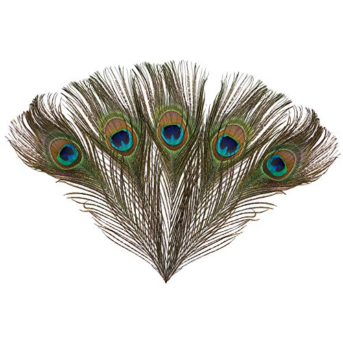 FASHEWELRY 10pcs Natural Peacock Tail Feather Green Iridescent Purple Real Peacock Feathers Ornament Accessories Perfect for Wedding Party Home Decorations DIY Arts Crafts Costume Mask, 25~30cm -