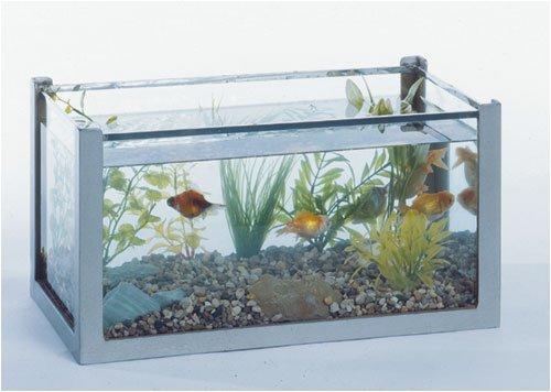 Fish 6 Gallon Tank - 5