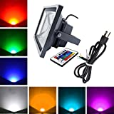 RGB LED Flood Light Outdoor Waterproof Remote Control Spotlight 30W with US Plug for Landscape Fountain Pond Colorful Lighting