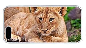 Fashion iphone 5S best case Lion cub close up PC White for Apple iPhone 5/5S