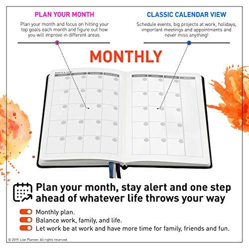 Amazon.com: Planificador de leones | Planificador semanal ...