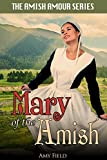 Mary of the Amish (Sweet Amish Romance Series Book 2)