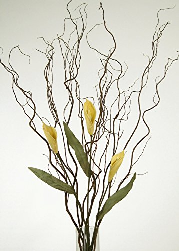 Calla Pink Long Lilies Stem (GreenFloralCrafts Curly Willow and Yellow Calla Lilies (Vase Not Included))