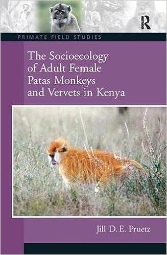 The Socioecology of Adult Female Patas Monkeys and Vervets in Kenya