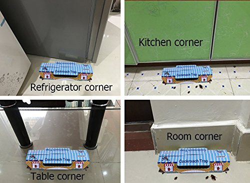 Cookey Cockroach Trappole per la Casa Pest Control Uccidere i Triotti Formiche Ragni e Altri Insetti con Bait Gratuita 10 Confezione Non Tossico ed ECO-Friendly