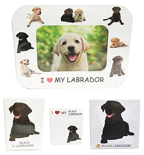 I Love My Black Labrador Magnet Set (2 Metal Magnets, 1 Photo Frame, 1 Memo Pad)
