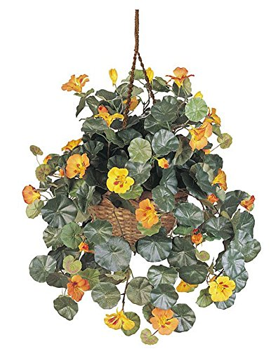 Plastic Nasturtium Artificial/Decorative Hanging Basket Silk (Nasturtium Hanging Basket)