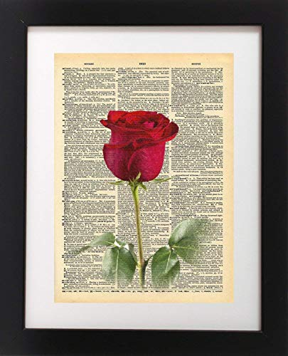 (Red Rose Vintage Dictionary Print 8x10 inch Home Vintage Art Abstract Prints Wall Art for Home Decor Wall Decorations For Living Room Bedroom Office Ready-to-Frame)