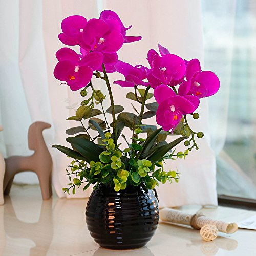 YILIYAJIA Artificial Orchid Bonsai with Ceramics Vase, Fake PU Real Touch Flowers Phalaenopsis Bonsai for Table Office Home Party Decoration (Style 1, Black Vase)