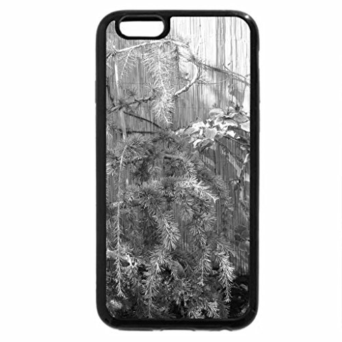iPhone 6S Plus Case, iPhone 6 Plus Case (Black & White) - A perfect day at Edmonton garden 29
