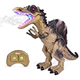 Remote Control Dinosaur for Kids, Electronic Walking and Spray Mist Large Spinosaurus Dinosaur with Glowing Eyes, Shaking Head, Roaring Dinosaur Sound, 18.5 Inch Realistic Robot Dinosaur Toy for Boys