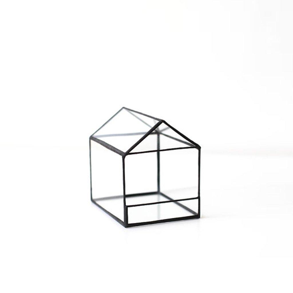 jinxin Irregular Prism Glass Geometric Terrarium Tabletop Box Flower Pot Planter Large Tall for Succulent Plant Fern Moss