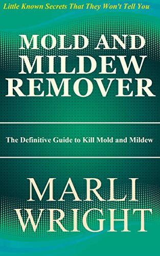 mold-and-mildew-remover-the-definitive-guide-to-kill-mold-and-mildew