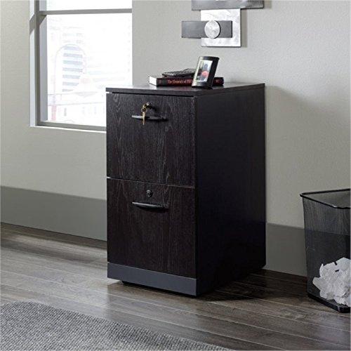 - Bowery Hill 2 Drawer File Cabinet in Bourbon Oak