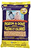 Pigeon & Dove Staple VME Seeds, 6 Pounds