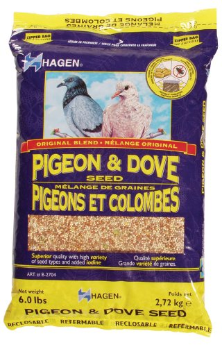 51%2BOBRoPlpL - Hagen Pigeon & Dove Staple VME Seeds, 6 Pounds