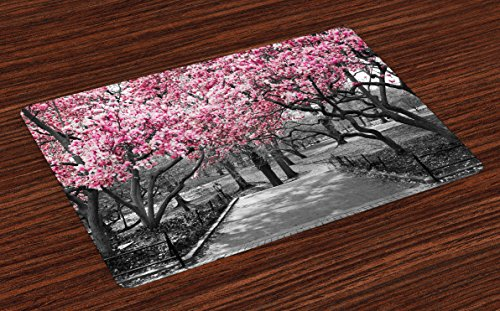 (Lunarable NYC Place Mats Set of 4, Blossoms in Central Park Landscape with Cherry Trees Forest in Spring Season Picture, Washable Fabric Placemats for Dining Table, Standard Size, Magenta Grey)