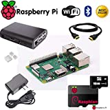 Raspberry Pi 3 B+ (B Plus) Ultimate Starter Kit- Includes Raspberry Pi Motherboard, 5V 2.5A On/Off Power Supply, Black Case, 16GB SD Card with Opearting System, 3pc Heatsinks, HDMI Cable- Plug N Play