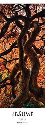 Bäume 2016 - Wald - Streifenkalender XXL (25 x 70) - Landschaftskalender - Naturkalender
