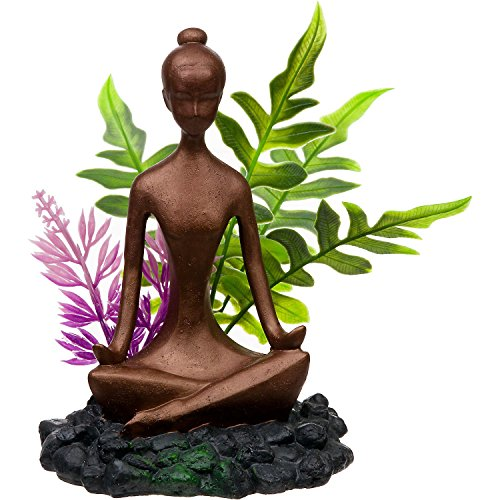 Blue Ribbon Zen Girl with Plants Aquarium -