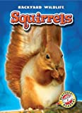 Squirrels, Derek Zobel, 1600144470