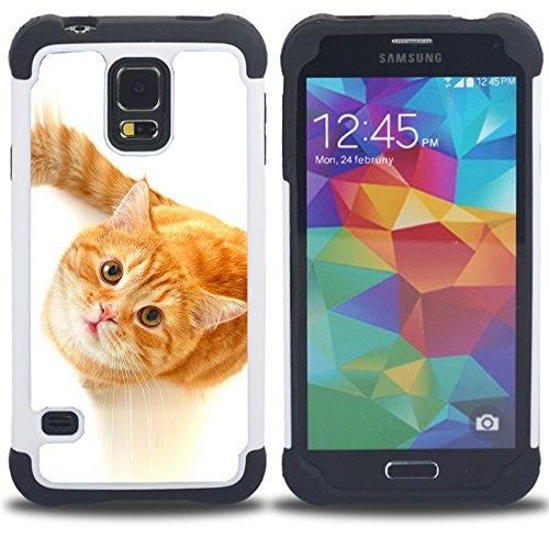 STPlus Gato en una caja Animal Doble Capa de Protección Rígido + Flexible Silicona Carcasa Funda Para Samsung Galaxy S5 #28