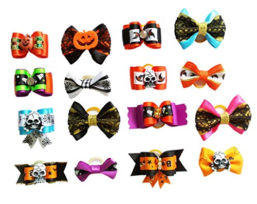 Assorted Dog Grooming - 8