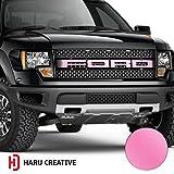ford truck f150 pink emblem - Haru Creative - Ford F-150 Raptor (2010 2011 2012 2013 2014) Hood Grill Emblem Letter Insert Overlay Vinyl Emblem Decal - Matte Pink