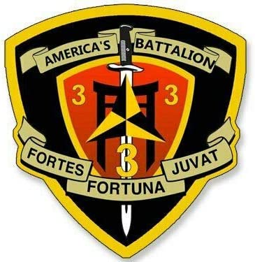 USMC 3rd Battalion 3rd Marines Insignia Military Graphics Decal Sticker Car