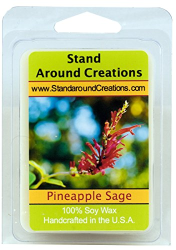 Red Pineapple Fragrance - 100% All Natural Soy Wax Melt Tart - Pineapple/Sage: Is a fragrant garden herb that attracts hummingbirds and butterflies to its edible red blooms. An exotic blend of sweet pineapple and aromatic sage. - 3oz - Naturally Strong Scented