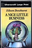 A Nice Little Business, Eileen Dewhurst, 0708926010