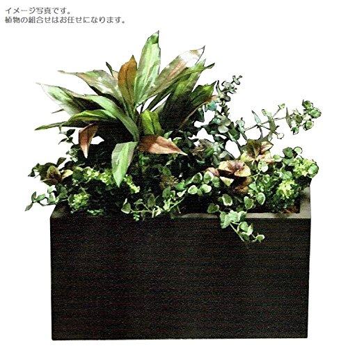 人工観葉植物 アーティフィシャルグリーンアレンジ 鉢付き 幅65cm rg-002 B074FYF9WD