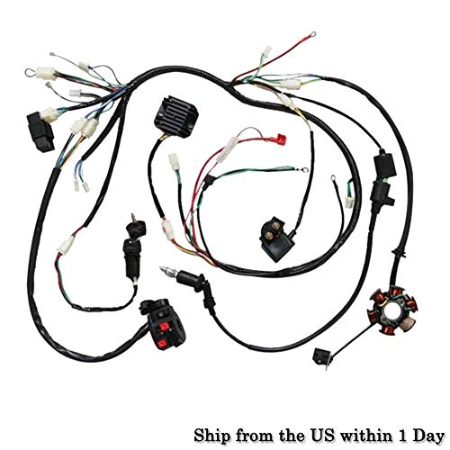 250 Cc Quad Bike - Complete Electric Wiring Harness Kit Coil CDI for GY6 150-250CC Quad Bike ATV Buggy