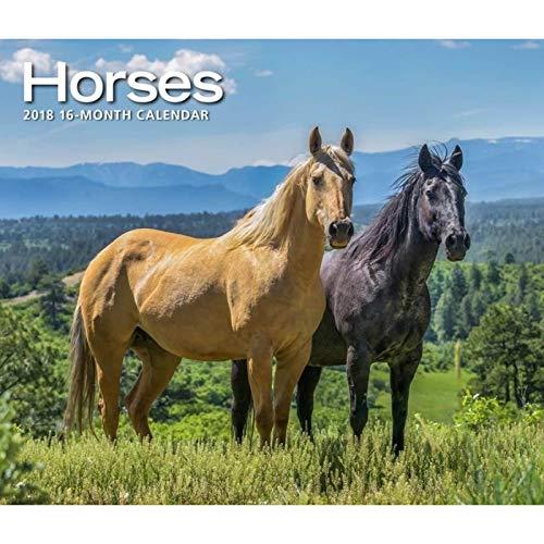 2019 Horses Deluxe Wall Calendar, by Calendar Ink
