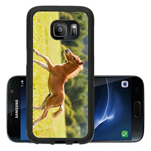 liili-premium-samsung-galaxy-s7-aluminum-backplate-bumper-snap-case-foal-mini-horse-falabella-image-