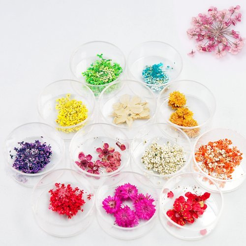 Polish Flower Pot (12 Style Color Nail Natural Dry Flower Decoration For 3D Nail Art Acrylic UV Gel Tips)