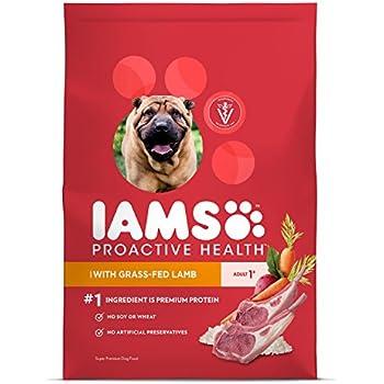 Amazon.com: IAMS Proactive Health Dry Dog Food, Lamb